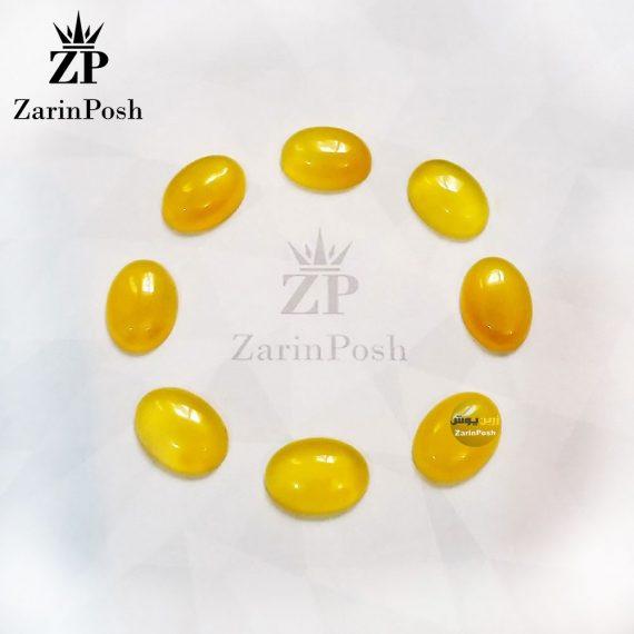 zarinposhstodio-10408104002506043-logo