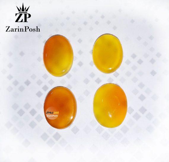 zarinposhstodio-10408104003508045-logo
