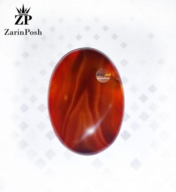 zarinposhstodio-1040810400516045-logo