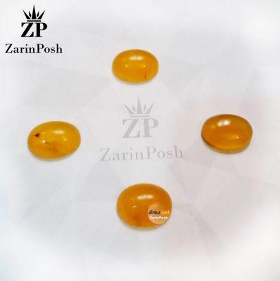 zarinposhstodio-10408104002508044-logo